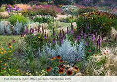 heronswood australia dry garden - Google Search
