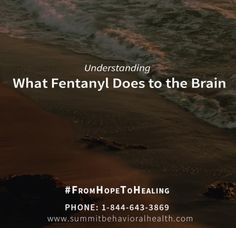 What makes #Fentanyl attractive is that it is easy and cheap to make. Our World is in a #crisis and what is being done?