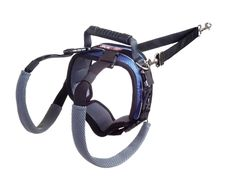 PetSafe Solvit CareLift RearOnly Lifting Harness Large Dog Lifting Harness for Rear Legs Comfortable Lifting Assistance for Old Injured or Recovering Dogs Helps Pets with Stairs Walks Bathroom Breaks and More * You can find out more details at the link of the image.-It is an affiliate link to Amazon. #PetHarnessesLeashes