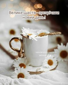 Tableware, Quotes, Quotations, Dinnerware, Tablewares, Dishes, Place Settings, Quote, Shut Up Quotes