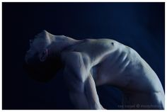 Bodyscape by Ray Vogel Photography