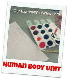 Human Body Unit Study. Includes activity for the systems of the body. Lots of different approaches which I love.