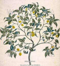 Design for The Ornamental Tree tile decoration, by C.F.A. Voysey. England, 1918