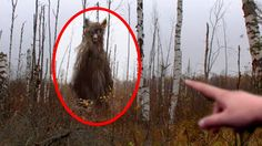 5 Werewolves Caught on Camera & Spotted In Real Life!