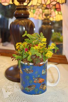 cute idea for small plant ... a coffee cup