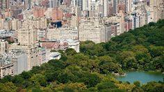 Explosion in New York: Mann verliert Fuß im Central Park