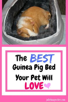 The best guinea pig bed your pet will love. This guinea pig bedding is ideal, easy to wash, can be flipped upside down for a cave, and your pet guinea pig will adore it