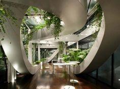 Amazing indoor herb garden