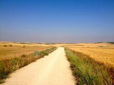 El Camino en Tierra de Campos: la Meseta.