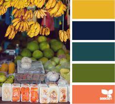 New kitchen colors schemes green design seeds ideas Blue Color Schemes, Colour Pallette, Color Palate, Bedroom Color Schemes, Bedroom Paint Colors, Living Room Colors, Color Combos, Design Seeds, Coral Design