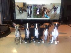 Custom Made 5 DOG Wedding Cake Topper Clay by LaurieValko on Etsy, $624.00