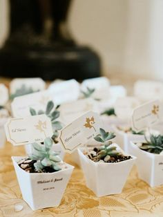 Featured Photo: Merari Photography; Chic, Old-School Inspired Florida Wedding Captured by Merari Photography - wedding favors Succulent Wedding Favors, Diy Wedding Favors, Wedding Themes, Wedding Invitations, Mod Wedding, Wedding Bride, Wedding Engagement, Florida Wedding Venues, Guest Gifts