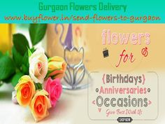 Seeking a affordable online shop that Send Flowers to Delhi at home price so end your journey at buyflower.in, Delhi Online Florist, Delhi Flowers Delivery. Fast Flowers, Send Flowers, 24 7 Delivery, Online Flower Delivery, Online Florist, Valentine Day Special, Gift Cake, Flowers Online, Fresh Fruit