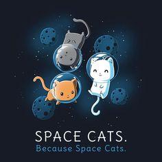 ฅ=^..^=ฅ HERE KITTY KITTY ~ Space Cats