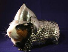 eBay USA: Kettenpanzer und Helm für Meerschweinchen im Angebot - http://www.onlinemarktplatz.de/35679/ebay-usa-kettenpanzer-und-helm-fur-meerschweinchen-im-angebot/