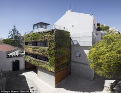 Plants grow up on the walls of 'the House in Travessa do Patrocinio' in Lisbon, Portugal #Mur végétal #Vertical Garden