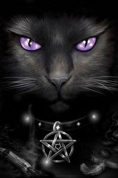 NOIR Black Beauty :: Black Magick Cat. - Pinned by The Mystic's Emporium on Etsy