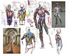 Analytical Figure Drawing - CGMA 2D Academy via PinCG.com