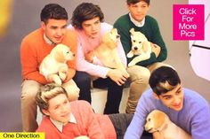 One Direction with puppies = WE DIE!