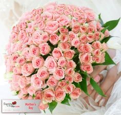 Surprise mom this Mother´s day with our stunning pink baby roses!