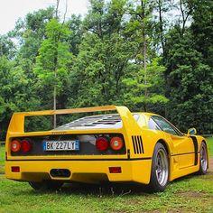 The yellow queen 📸 Ferrari Laferrari, Exotic Cars, Luxury Cars, Dream Cars, Engineering, Queen, Street, Yellow, Vehicles