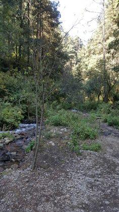 Parque Ecológico dos aguas