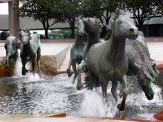Mustangs of Las Colinas. I've always had a love for sculpture and this piece is a fantastic combination of motion and still.