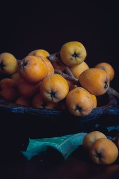Lulu's Sweet Secrets: Loquat Cake and The Spring in Brazil