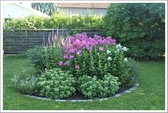 This post covers several affordable landscaping project ideas to help homeowners increase their property value. Small Gardens, Outdoor Gardens, Garden Pictures, Cool Landscapes, Garden Planters, Dream Garden, Garden Planning, Trees To Plant, Backyard Landscaping
