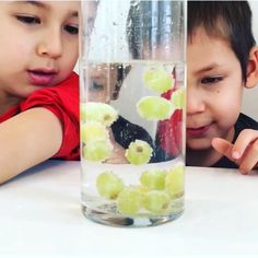 This simple science experiment takes only a couple minutes to set up and will have both kids and adults amazed! for kids Dancing Grapes Science Experiment * ages ⋆ Raising Dragons Science Experiments For Preschoolers, Science Projects For Kids, Science Activities For Kids, Cool Science Experiments, Preschool Learning, Science Classroom, Stem Activities, Kindergarten Projects, Science Crafts