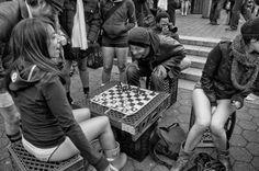 Casa do Xadrez de Alpiarça: Variante Olhos-em-Bico