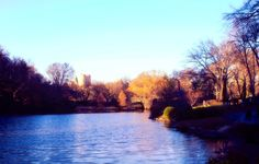 New York, Central Park, Lake, Water, Trees, Green, Blue, Sky, Colour, Wall Art, Home Decor by PhotosbyAnnaMarie on Etsy https://www.etsy.com/listing/230381341/new-york-central-park-lake-water-trees