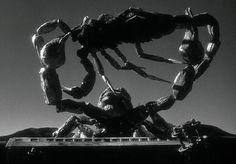 """The Black Scorpion"" (Edward Ludwig, 1957)"