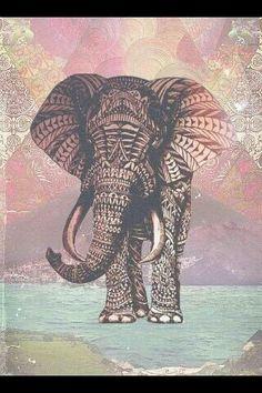 elefante fuerte y débil, grande pero pequeño.I Love