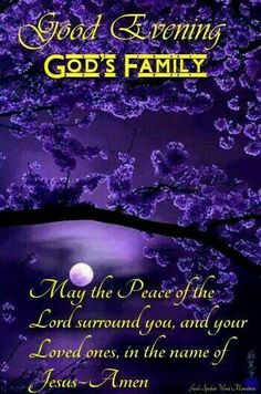 Have a peaceful relaxing evening. Good Night Prayer Quotes, Good Night Messages, Devotional Quotes, Biblical Quotes, Bible Quotes, Qoutes, Good Night Friends, Good Morning Good Night, Goodnight Quotes Inspirational