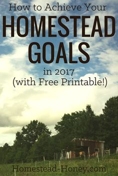 Are you ready to achieve your homesteading goals in 2017? Download my free worksheet that will help you create an inspired action plan for your dreams.   Homestead Honey
