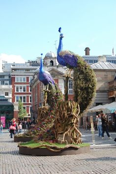 Floral sculpture ~ very cool Preston Bailey installation using potted plants to create the tail