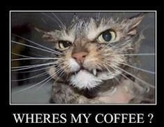 This is me before coffee on a Wednesday...