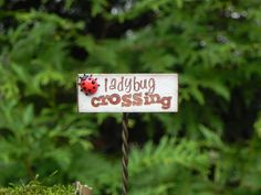 Hey, I found this really awesome Etsy listing at http://www.etsy.com/listing/113791008/fairy-garden-sign-ladybug-crossing