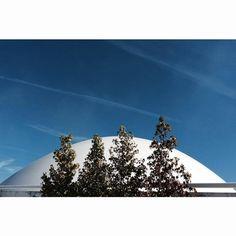 Vegetal de Niemeyer. Avilés. #niemeyer #architecture #photo