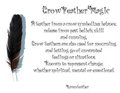 My Original Version of Crow Feather Magic *Please check your local and federal guidelines for feather collection and possession! Wicca Witchcraft, Wiccan, Magick Spells, Crow Feather, Animal Spirit Guides, Spirit Animal, The Frankenstein, Crows Ravens, Practical Magic