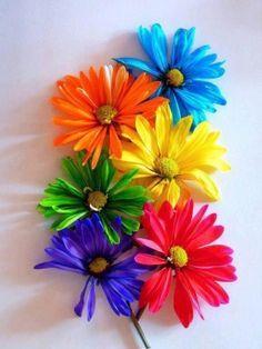.floral rainbow.              t
