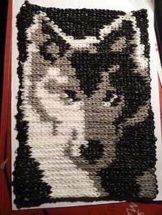 Wolf 3810 mit Doppelten Gummis gelooms
