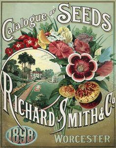 Richard Smith  Co. 1898 Seed Catalog
