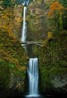 Fall at Multnomah Falls by SheldonBranford   Columbia River Oregon