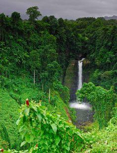 Upolu Waterfall | Samoa (by Philip Griffin)