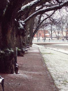 Turku, Finland <3
