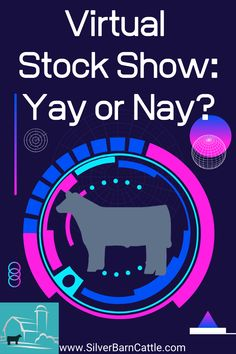 Are virtual stock shows a good thing, or just a waste of time?  Get livestock showmanship and video tips if you decide to participate!