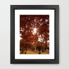Autumn Sun Framed Art Print by Lisa De Rosa-Essence of Life Photography - http://society6.com/LisaDeRosa