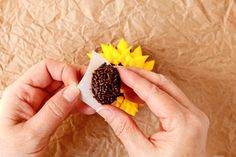 Sunflower Cupcake with a How to Video Pretty Cupcakes, Yummy Cupcakes, Cupcakes Fall, Buttercream Flowers, Buttercream Frosting, Sunflower Cupcakes, Cupcake Videos, Cupcake Tutorial, Edible Flowers